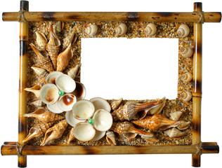 Photoframework from sea cockleshells on white background