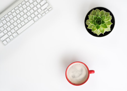 Keyboard, cup of coffee and succulent flower in pot.
