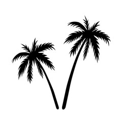 Two palms sketch. Black coconut tree silhouette, isolated on white background. Symbol of tropical nature, beach, summer holiday, travel. Floral exotic landscape. Natural design. Vector illustration
