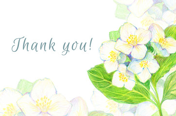 Set of greeting cards. Hand-drawn Flowers Jasmine. Thank you!