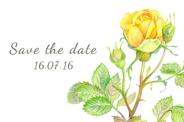Set of greeting cards. Hand-drawn Flowers rose. Save the date.