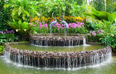 Fountain and orchids