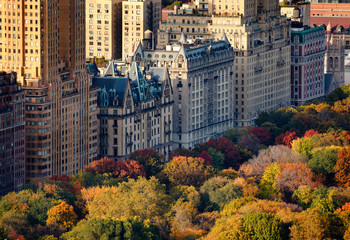 Afternoon light on Central Park's treetops and New York City buildings. Upper West Side building facades and tree colors lit by the autumn sun