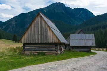 Foto op Plexiglas Heuvel Dolina Chochołowska