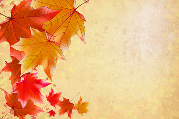 background, wallpaper, autumn leaves, swirling leaves