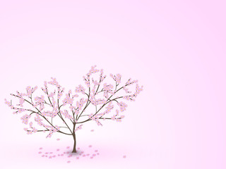 Weeping cherry tree with falling flowers on a pink background