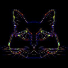 Rainbow cat. The fat content of the rainbow cat