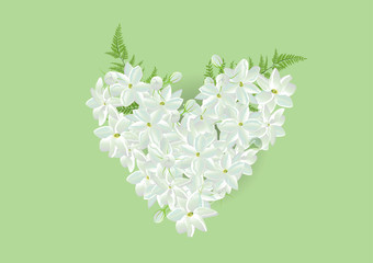 Jasmine heart shape with fern leaf on green background.isolated pictures  for card or object