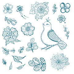 Collection of doodle floral elements and bird
