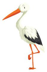 Crane standing on one leg