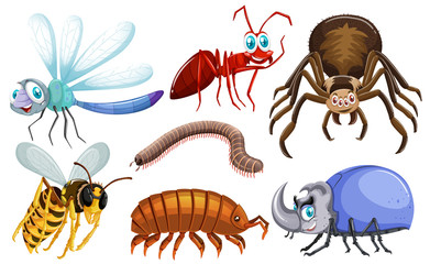 Set of different types of bugs