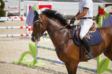 Horseman on its steed at equestrian show