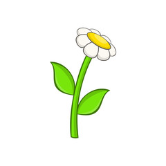 Chamomile icon in cartoon style on a white background