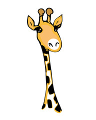 Cute giraffe with long eyelashes