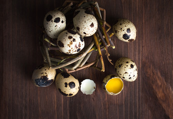 Quail eggs on a dark wooden table.
