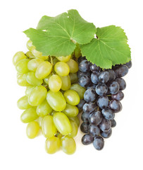 Fresh green and blue grapes with leaves. Isolated on white