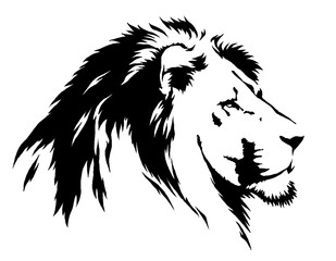 black and white linear paint draw lion illustration
