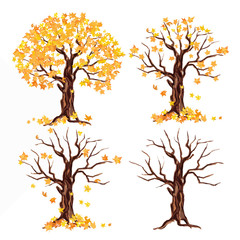 weatercolor autumn tree set on white background. Yellow and orange leaves falling.