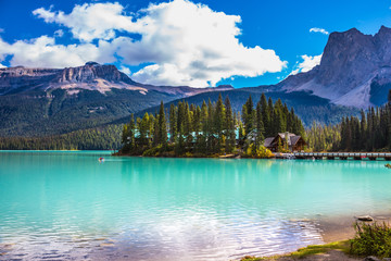 The forest and Emerald Lake