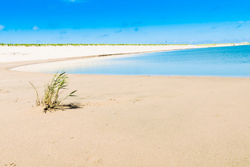 Beautiful Beach scene / A wonderful deserted beach scene