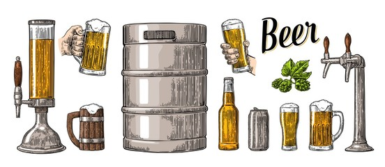 Beer set with two hands holding glasses mug and tap, can, keg, bottle.