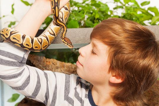 Young boy with pet snake - Royal or Ball Python