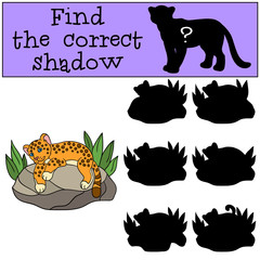 Educational game: Find the correct shadow. Little cute baby jaguar.