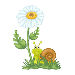 Illustration of cute cartoon snail and daisy flower