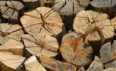 Firewood Bundle. folded logs