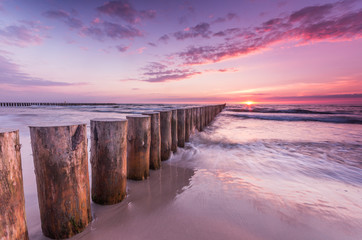 Wooden breakwater - Baltic seascape at sunset, Poland Wall mural