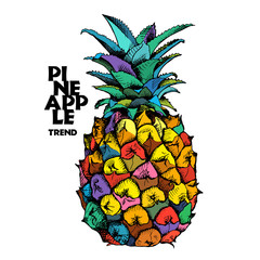 Bright Poster with Image of a pineapple fruit. Vector illustration.