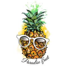 Pineapple fruit in a glasses. Vector illustration.