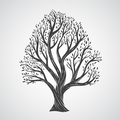 Hand draw tree with leaves
