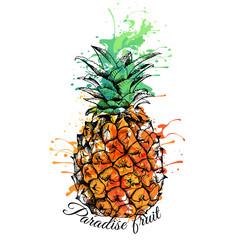 Bright color Pineapple. Vector illustration.
