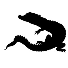 Crocodile black silhouette