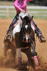 The front view of the rider in leather chaps sliding his horse forward and raising up the clouds of dust