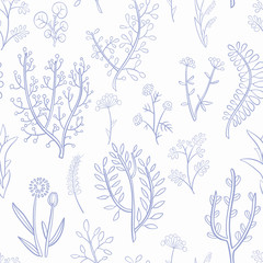 Seamless pattern of wild herbs and flowers, hand-drawn.