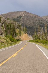 Wall Mural - Road to East Entrance Yellowstone National Park Avalanche Peak