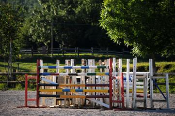 Springen paardensport