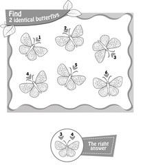 find 2 identical butterflys black