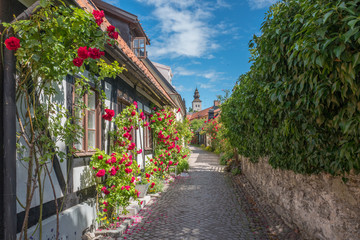 Spoed Fotobehang Scandinavië Medieval alley in the historic Hanse town Visby on Swedish Baltic sea island Gotland