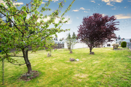 Nice Spacious Backyard Garden With Fruit Trees Stock