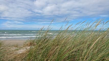 Fototapete - coast of Denmark