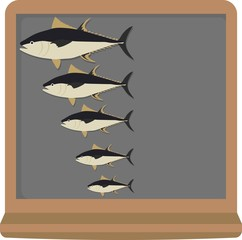 Fish sizes from big to small on blackboard