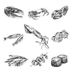 Seafood sketch vector illustration set