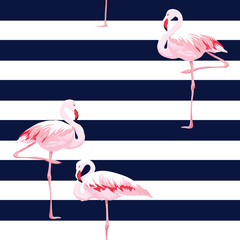 Pink flamingo seamless pattern with stripes