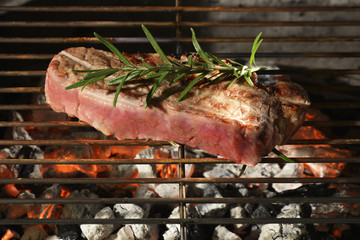 Grill with steak and rosemary on the Embers