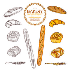 Baking collection baguettes bread and rolls collection