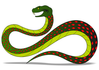 colred snake