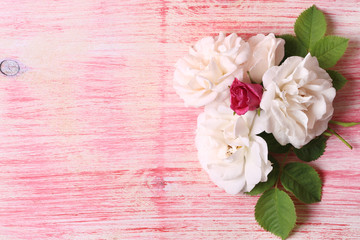 white roses on pink wooden background booklet for advertising place for text